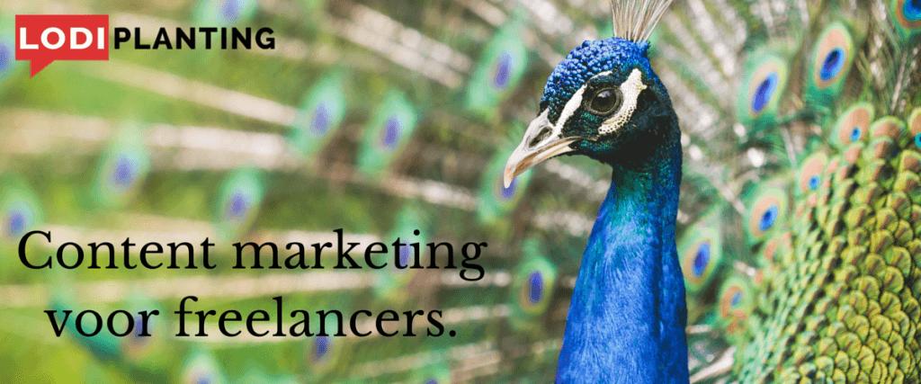 Content marketing voor freelancers. (LodiPlanting.com)