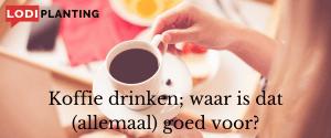 Koffie drinken; waar is dat (allemaal) goed voor (LodiPlanting.com) (2)