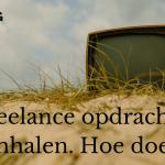 Freelance opdrachten binnenhalen. Hoe doe je dat- (LodiPlanting.com) (3)